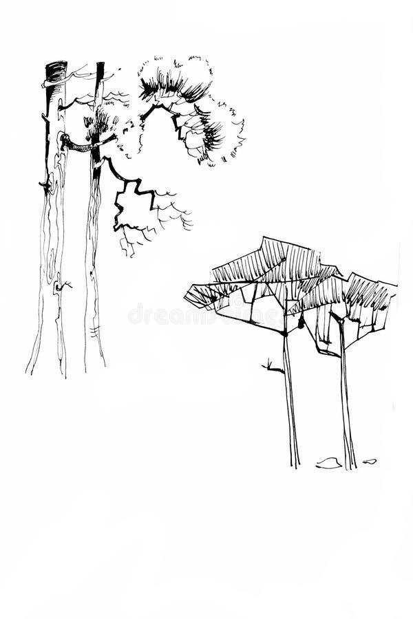 Lineart démodé d'encre de dessin d'arbre de stylization illustration stock