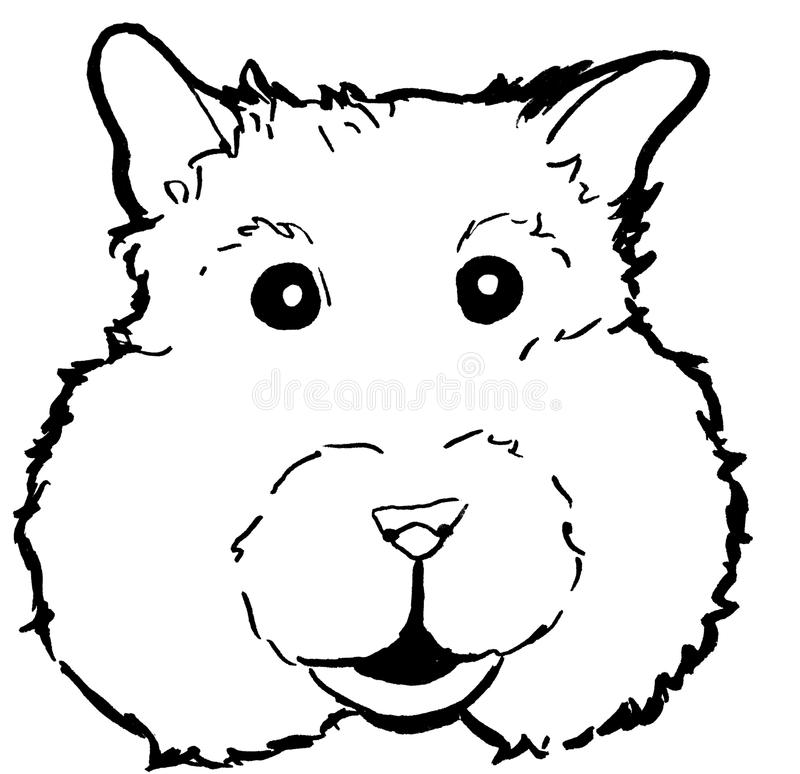 Lineart de tête de hamster, dessin, tiré par la main photos stock