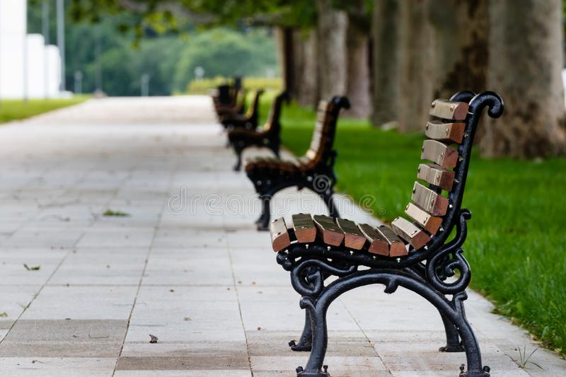 Empty benches at the park in the morning stock photos