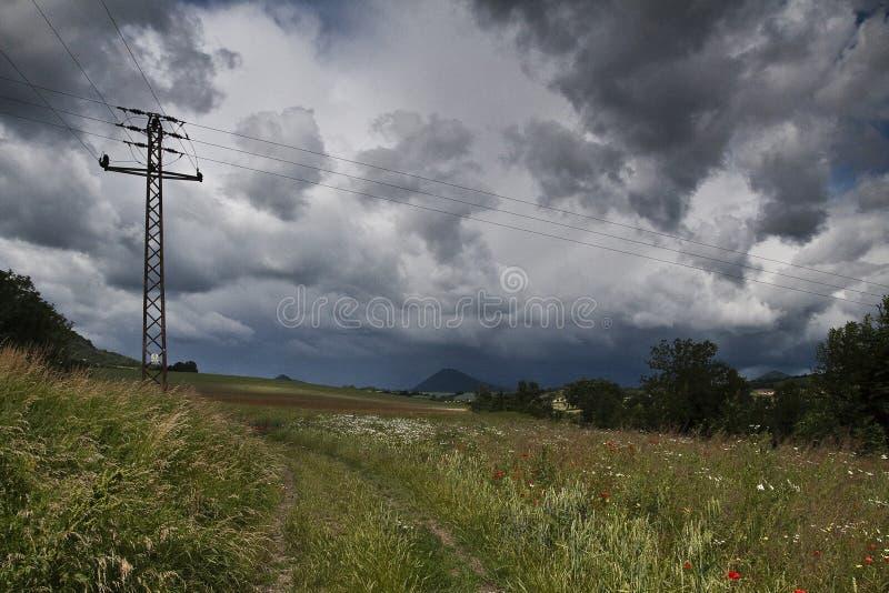 Linee elettriche accanto al campo di erba fotografia stock