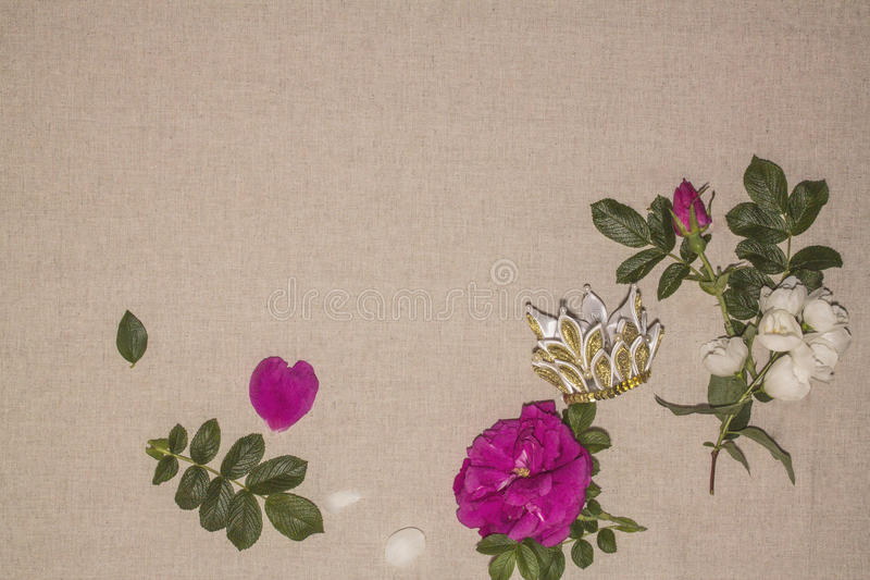 Linen background 11 stock photography