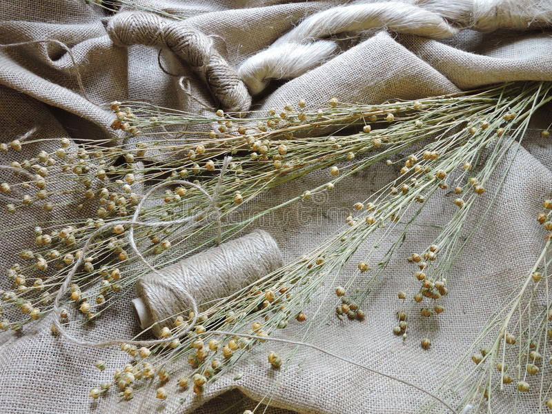 Linen fabric and thread royalty free stock photo