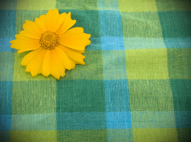Download Linen Fabric And Yellow Flower Stock Image - Image: 15896171