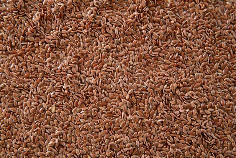 Linen Seeds Stock Image