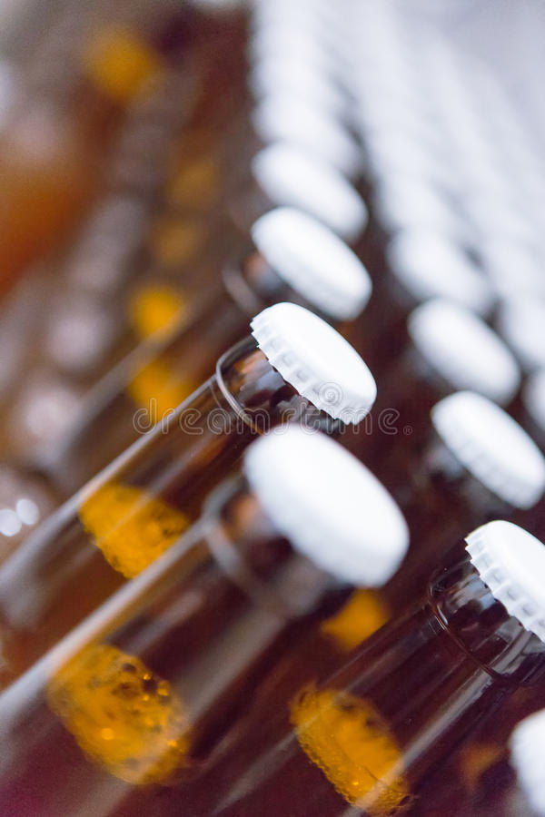 Lines of beer bottles. Close-up of lines of beer bottles with white lids stock images