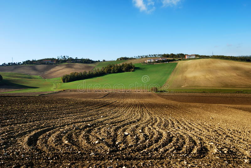 Download Lines in plowed fields stock image. Image of hills, outside - 11656227