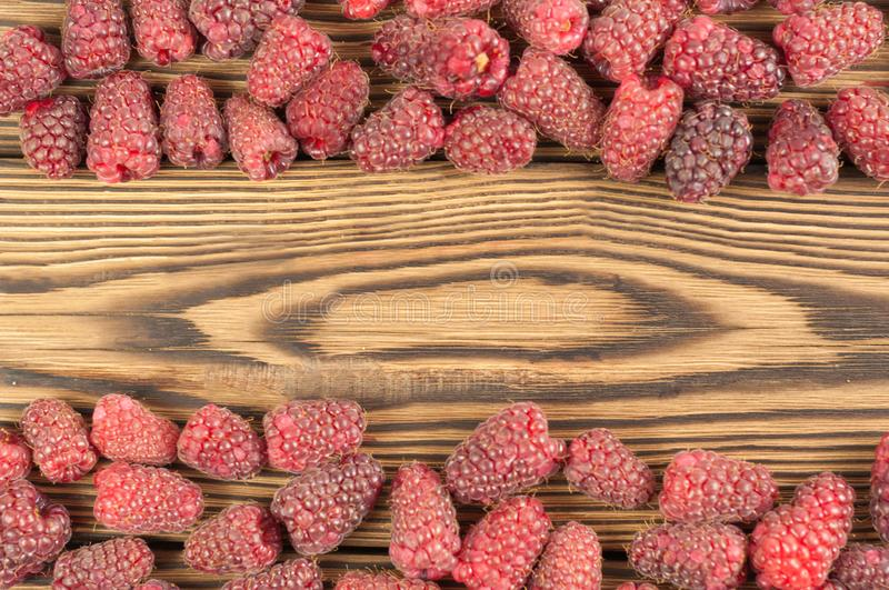 Lines with red fresh raspberries royalty free stock photos
