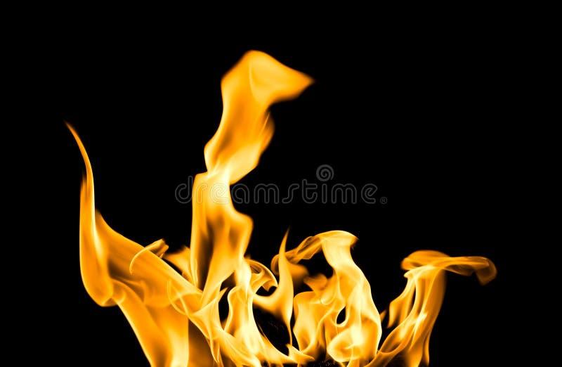Lingüetas do incêndio fotos de stock