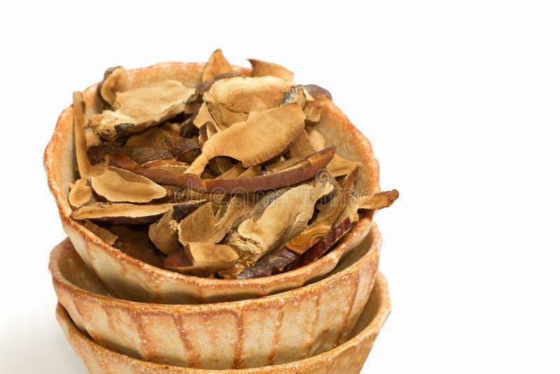 Ling Zhi Mushroom seco, cogumelo de Reishi foto de stock