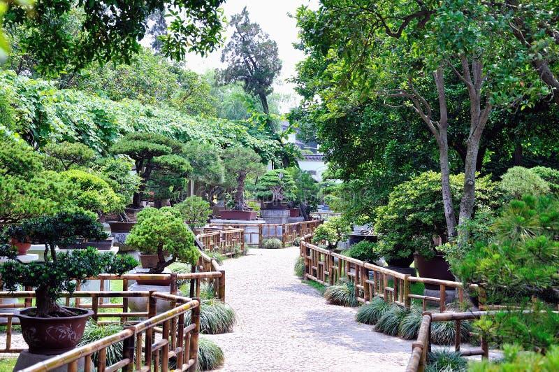 Lingering Garden bonsai garden stock images