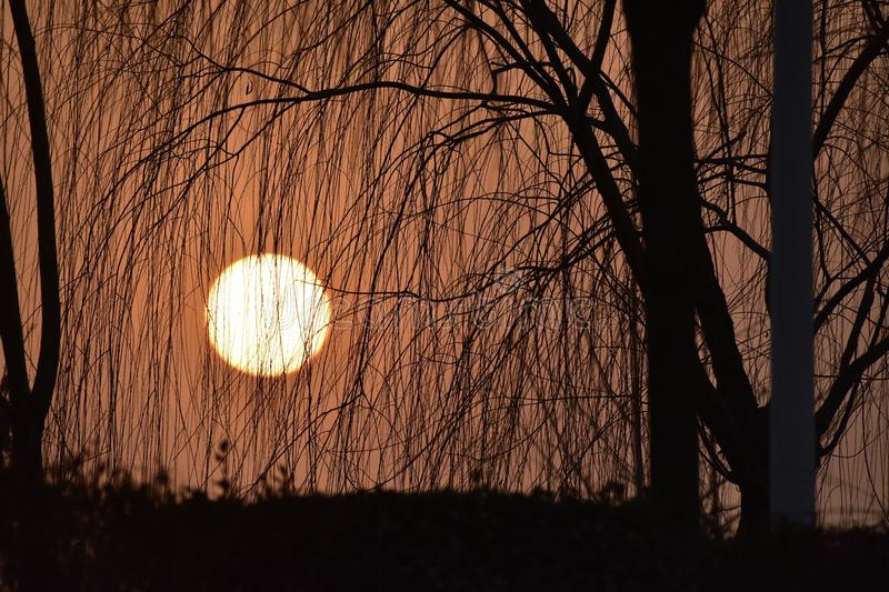 Lingering light of the setting sun royalty free stock photography