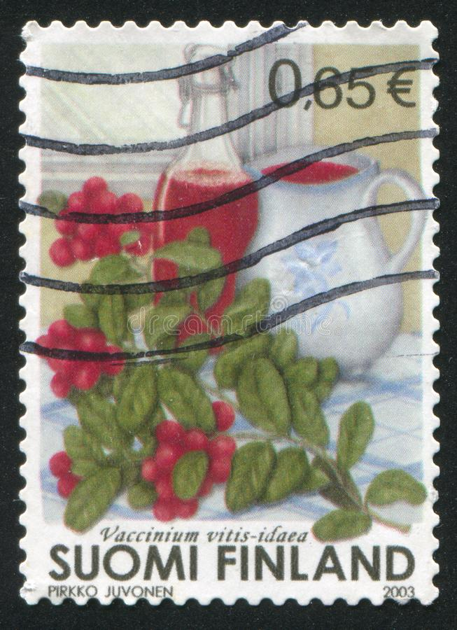 Lingonberry. FINLAND - CIRCA 2003: stamp printed by Finland, shows Still Life with Lingonberry, circa 2003 royalty free stock images