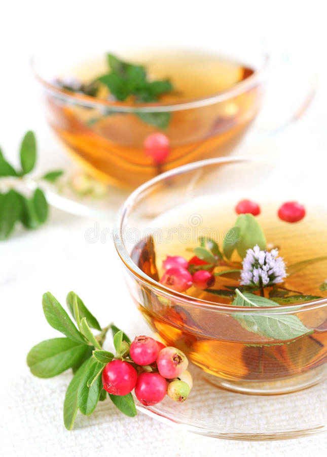 Lingonberry tea. With mint leaves royalty free stock image