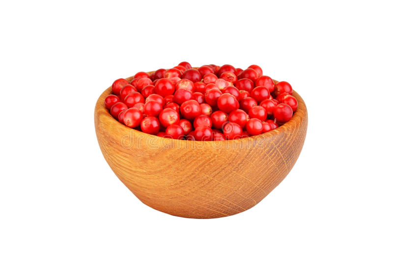 Lingonberry (Vaccinium vitis-idaea). In dish on white background royalty free stock photo
