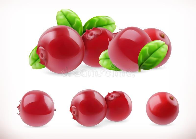 Lingonberry Vossebes zoet fruit Bosbes 3d vector geplaatste pictogrammen stock illustratie