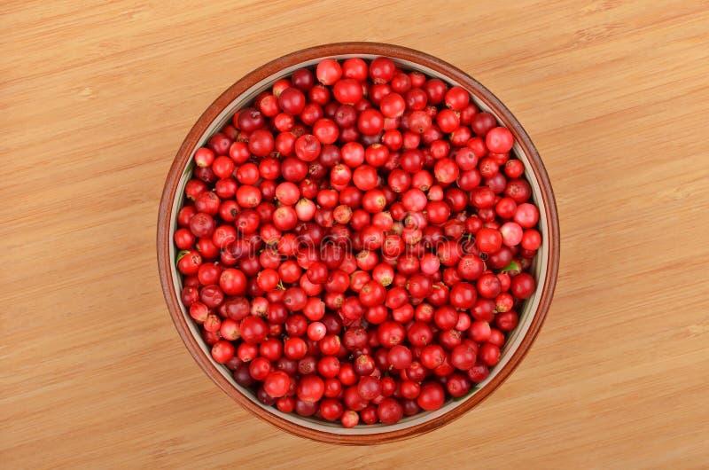 Lingonberry y x28; Vitis-idaea& x29 del Vaccinium; imagen de archivo