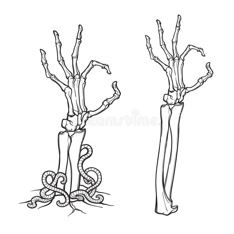 Linguagem corporal do zombi Aprove o sinal Pares de mãos de esqueleto que aumentam da terra ilustração royalty free