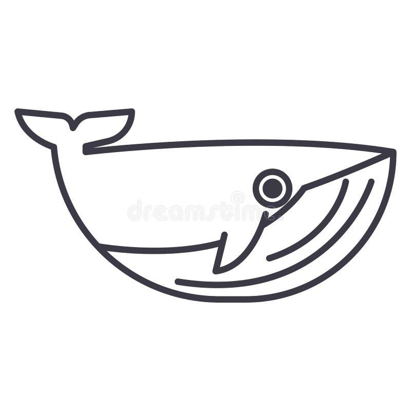 Linha ícone do vetor da baleia, sinal, ilustração no fundo, cursos editáveis ilustração do vetor