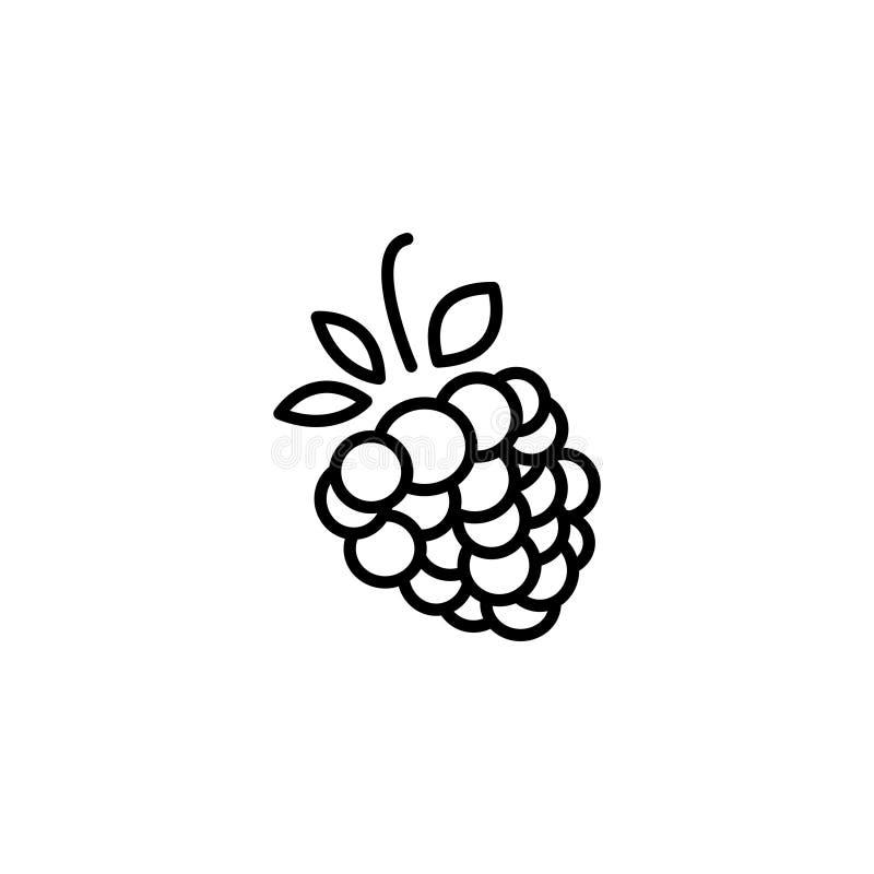Linha ícone Símbolo das framboesas ilustração stock