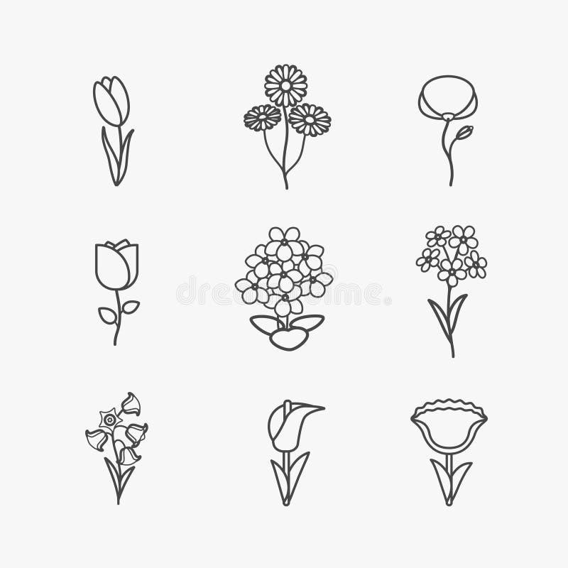Linha ícones das flores ilustração do vetor