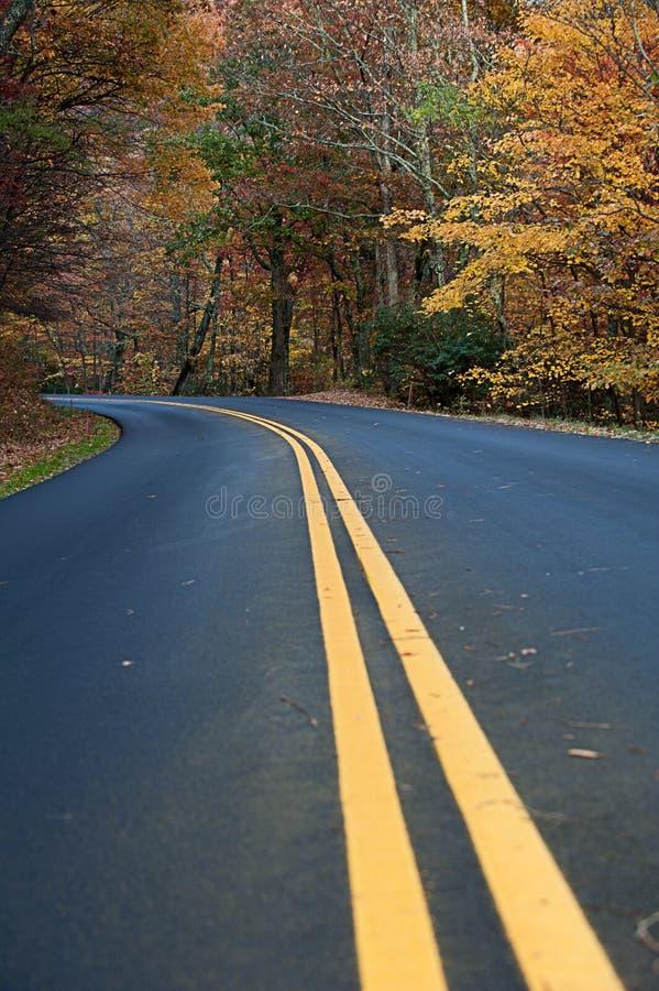 Linha central de uma estrada secundária imagem de stock royalty free
