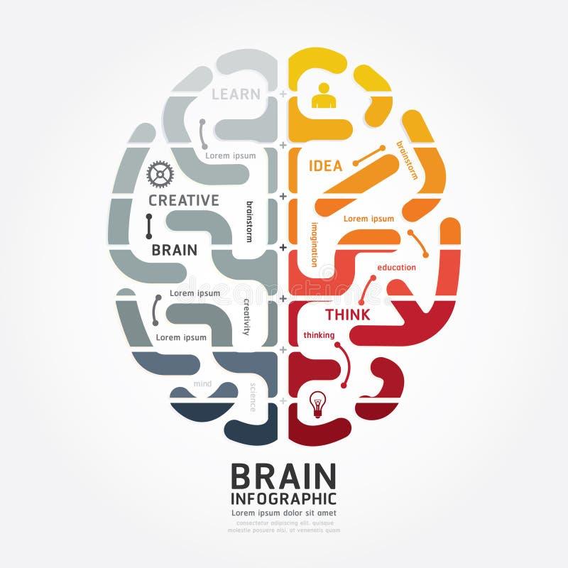 Linha cor do diagrama do projeto do cérebro do vetor de Infographics do monochrome ilustração do vetor