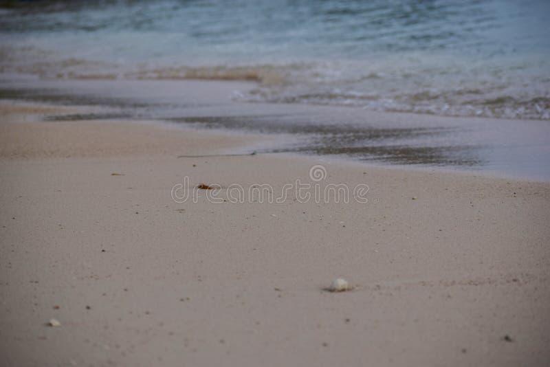 Linha costeira abstrata borrada praia do fundo perto acima estilizado fotos de stock royalty free