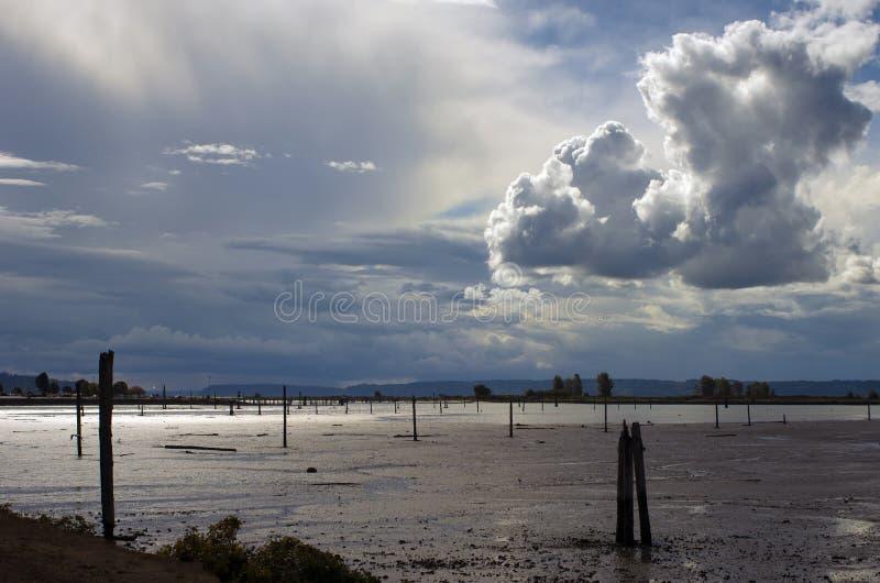 Linha costeira ao norte de Everett, de Washington, e de um céu dramático foto de stock