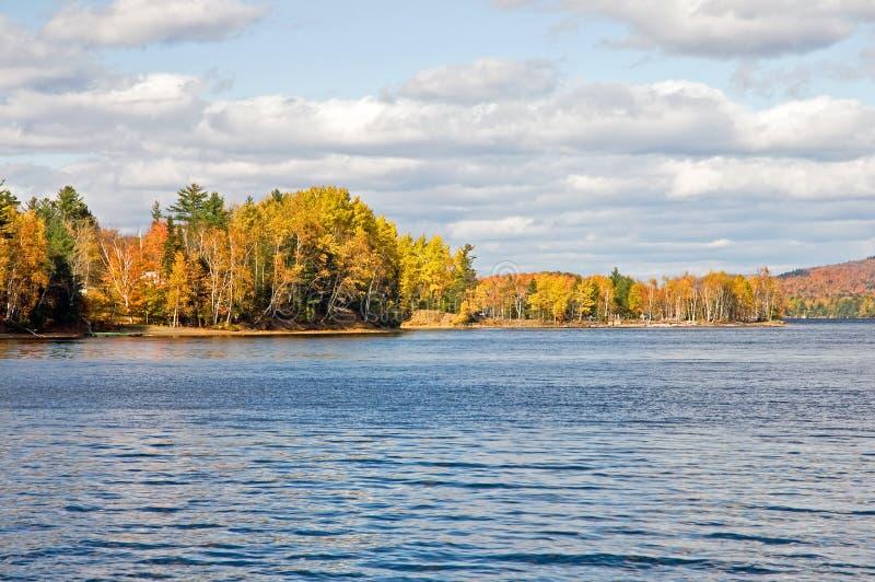 Linha costeira da floresta das folhas de outono foto de stock