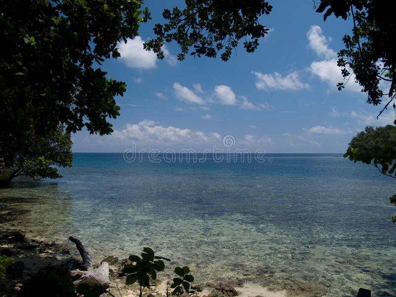 Linha costeira de Solomon Island fotografia de stock royalty free
