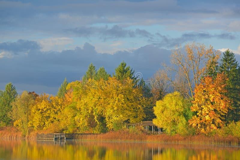 Linha costeira do outono fotografia de stock