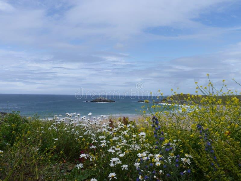 Linha da costa de Cornualha fotografia de stock royalty free