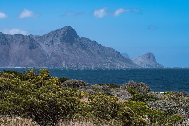 Linha da costa na baía de Pringle, África do Sul imagem de stock