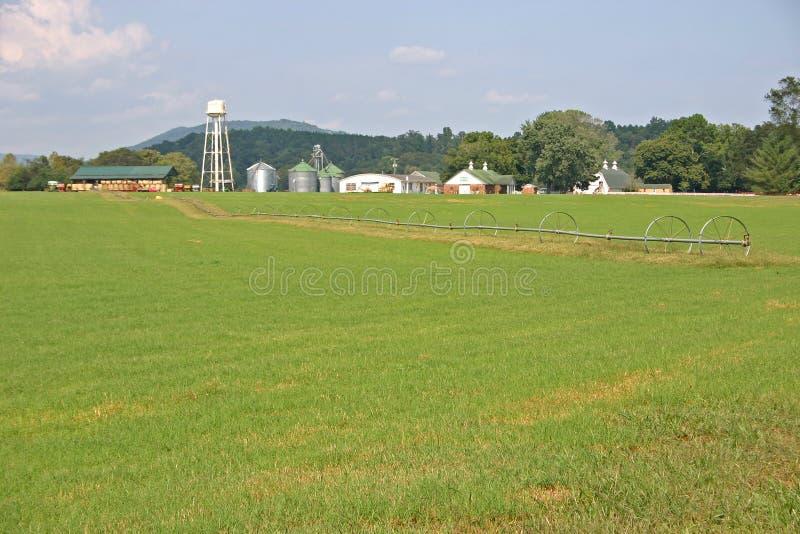 Linha da irrigação
