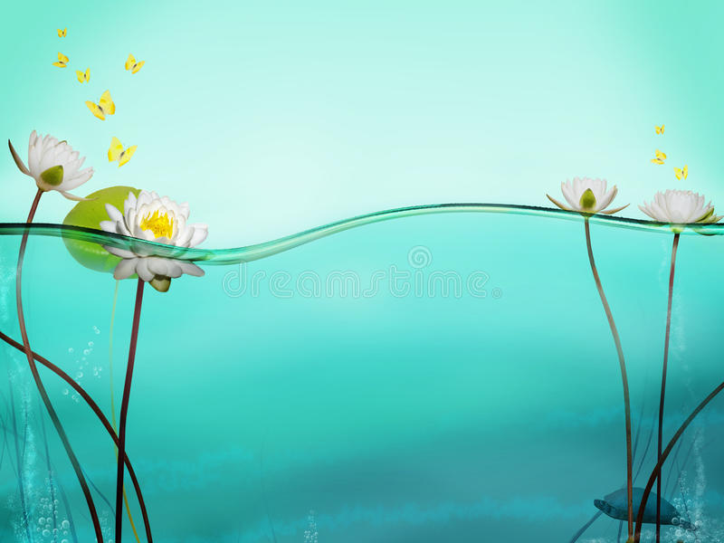 Linha de água