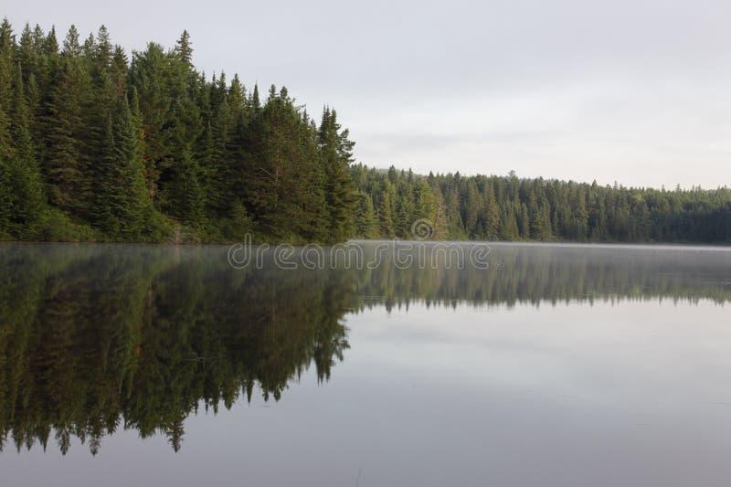 Linha de árvore do lago Pog imagens de stock