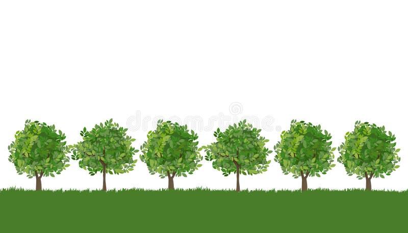Linha de árvores na grama luxúria ilustração royalty free
