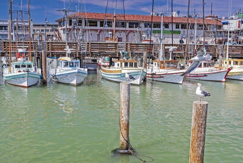 Linha de barcos de navigação coloridos no cais de Fishermans de San-Franci imagens de stock