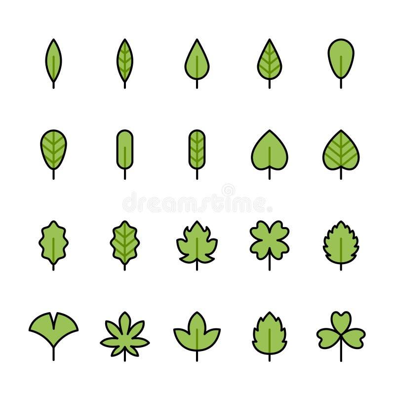 Linha de cor grupo do ícone da folha ilustração do vetor