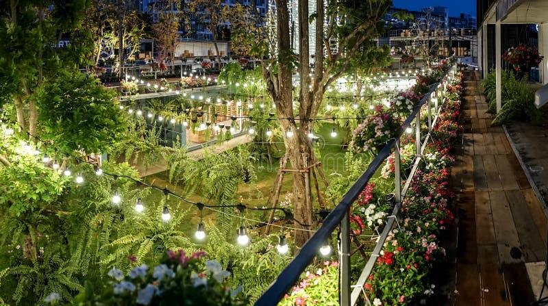 A linha de luz do tungstênio foi decorada no jardim do recipiente na noite fotos de stock royalty free