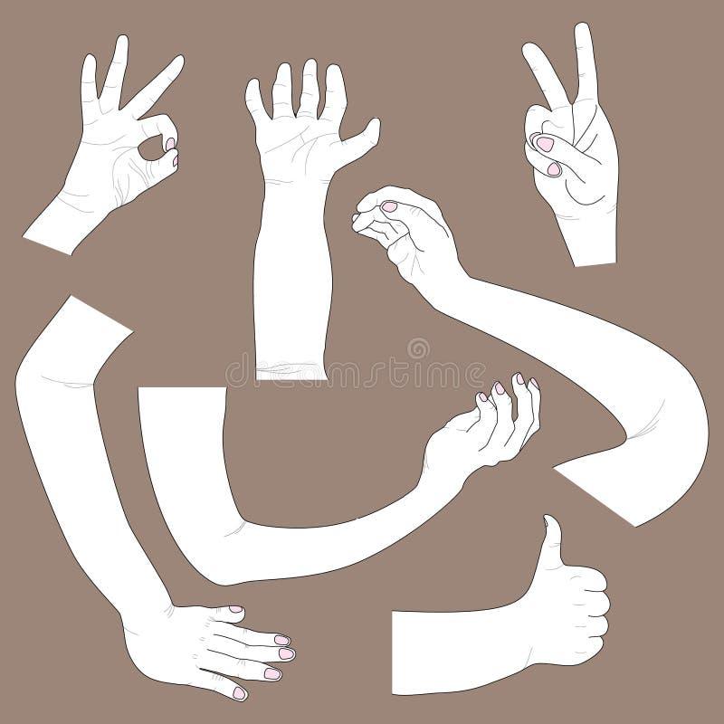 Linha de mão tração ilustração do vetor