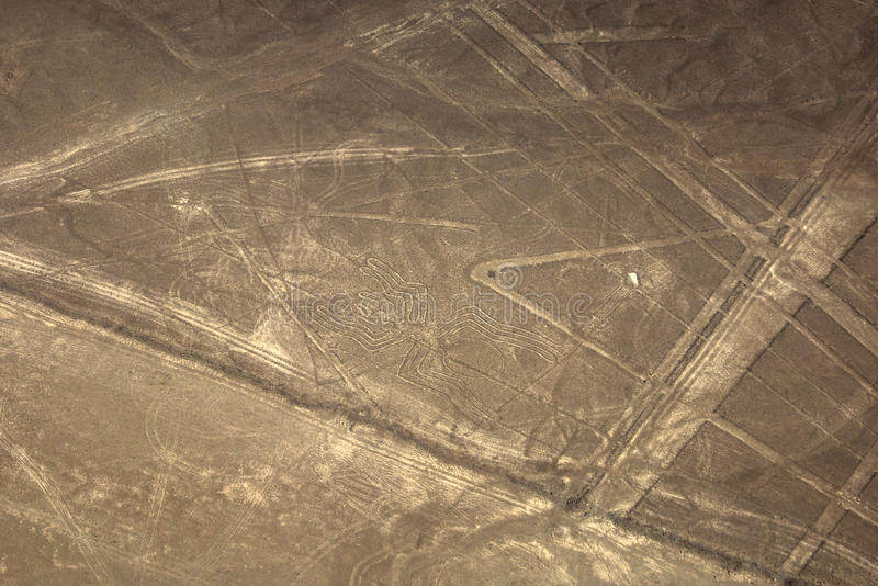 Linha de Nazca da aranha imagem de stock