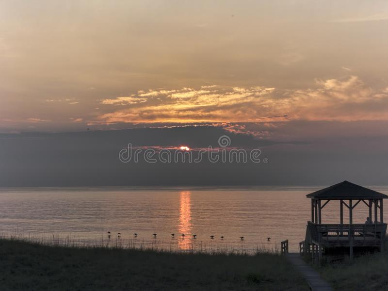 Linha de pelicanos sobre o nascer do sol do oceano nos bancos exteriores de North Carolina foto de stock
