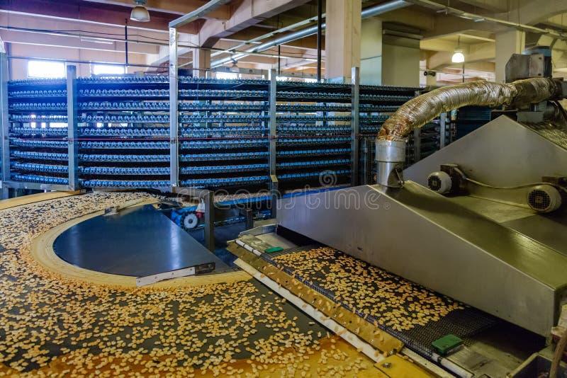 Linha de produção automatizada de cookies pequenas do biscoito de sal Linha máquina do forno e do transporte foto de stock