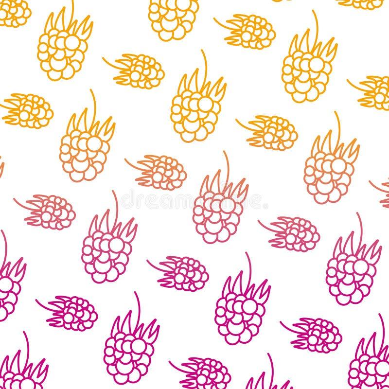 Linha degradada fundo delicioso do fruto fresco das uvas ilustração royalty free