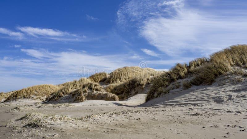 Linha dinamarquesa da costa e da praia em Grønhoj, perto de Løkken, Dinamarca norte fotos de stock