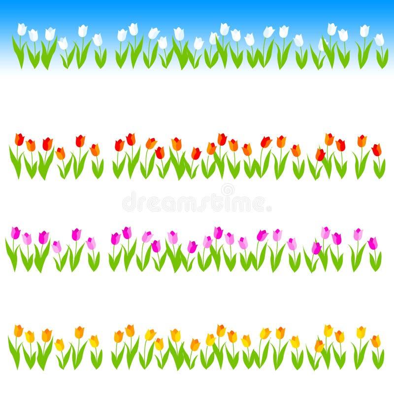 Linha/divisor do Tulip ilustração royalty free