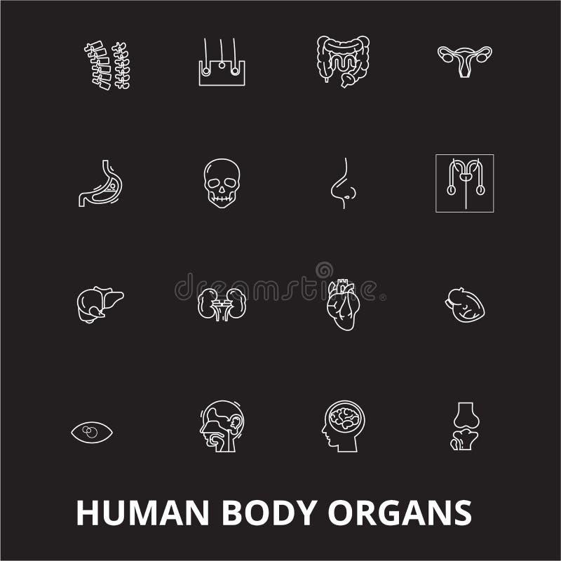 Linha editável grupo dos órgãos do corpo humano do vetor dos ícones no fundo preto Ilustrações brancas do esboço dos órgãos do co ilustração do vetor