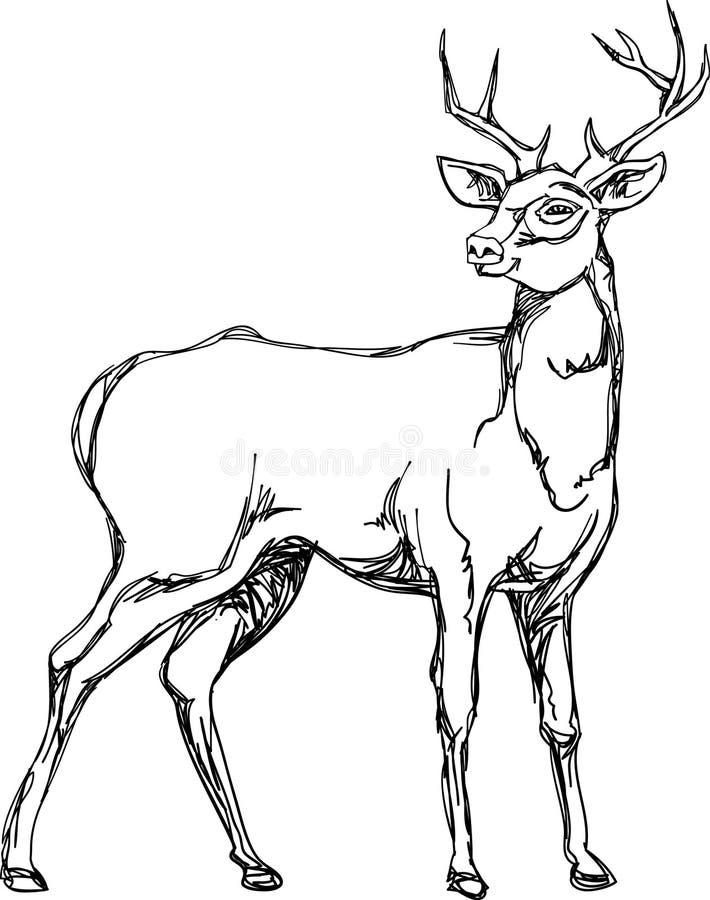 Linha ereta imagem dos cervos da arte ilustração royalty free