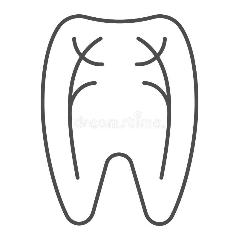 Linha fina ícone dos nervos do dente Ilustração do vetor do dentista isolada no branco Projeto peridental do estilo do esboço, pr ilustração royalty free